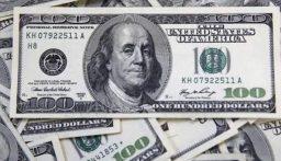 استقرار سعر الدولار