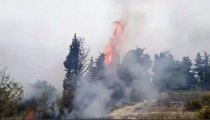 إندلاع حريق في بطرماز الضنية ومناشدات لإهماده