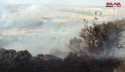 الحكومة السورية تتوعد بعقوبات لمتسببي الحرائق
