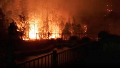 الساحل الشرقي لأستراليا يعلن حالة الطوارئ بسبب الحرائق