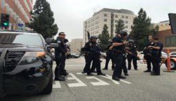 بالفيديو: 40 ألف نحلة تهاجم الشرطة الاميركية!