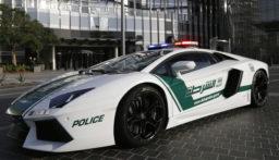 شرطة دبي تعتقل زعيم عصابة دانماركياً من أخطر قادة العصابات العالمية