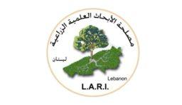 مصلحة الابحاث في تل عمارة: هطول أمطار غزيرة مساء السبت وتساقط ثلوج على المرتفعات