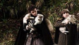 وفاة ذئب مسلسل Game Of Thrones بعد صراع مع مرض السرطان