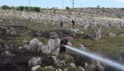 اهماد حريقين في في خراج راسمسقا وبطرام