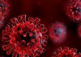اصابة جديدة بفيروس كورونا في عكار