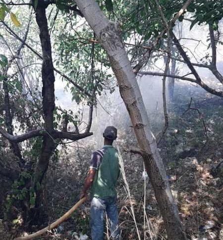 إهماد حريق في عاصون قبل اقترابه من المناطق السكنية