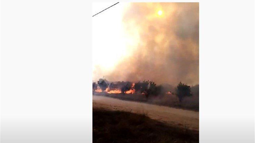 الدفاع المدني يعلن إهماد الحريق الذي اندلع في مرج بسري