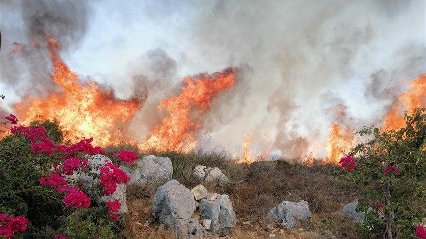 مخاوف من امتداد حريق كبير اندلع بين بلدتي كفرفو وكرم سدة في زغرتا