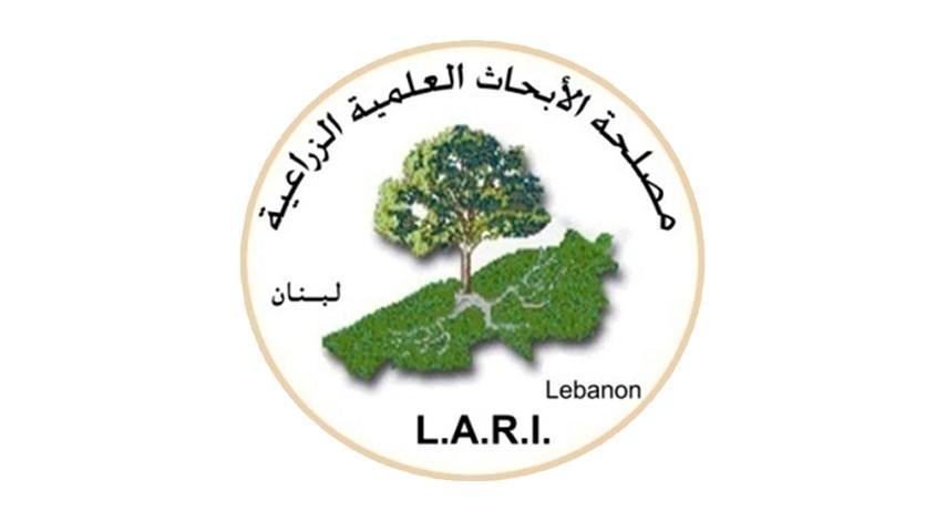 منخفض جوي قوي سيضرب لبنان!
