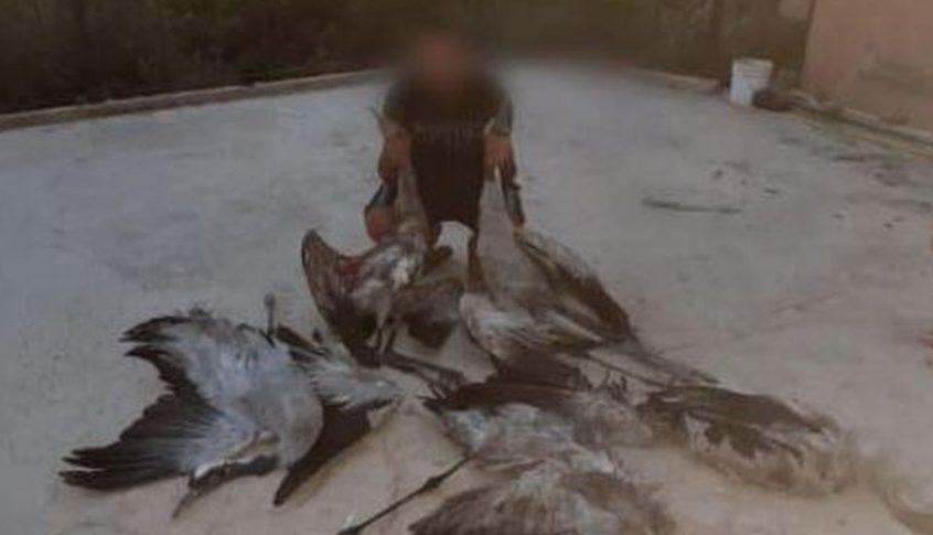 قوى الأمن تلقي القبض على مرتكبي جرم مخالفة قانون الصيد بحق طيور الرهو المهاجرة والمحظّر صيدها دوليًّا