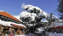 استمرار المنخفض الجوي.. الطقس غداً عاصف والثلوج على ارتفاع 1100 متر