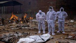 الهند تسجل أكثر من 400 ألف إصابة بكورونا في يوم واحد