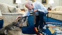 """بالصورة: بايدن يعلن موت كلبه """"تشامب""""!"""