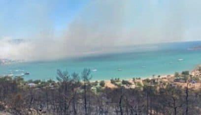 حرائق الغابات في تركيا مستعرة وسقوط 4 قتلى جراء النيران