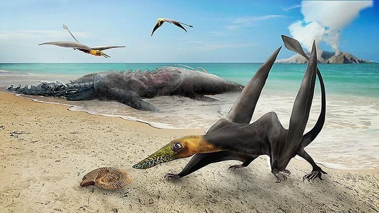 """اكتشاف حفرية """"تنين طائر"""" عمره 160 مليون عام"""
