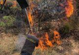 اهماد حريق في جديدة القطيع